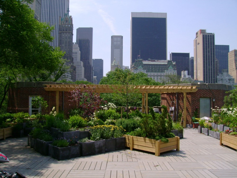 Roof garden with Manhattan skyline.