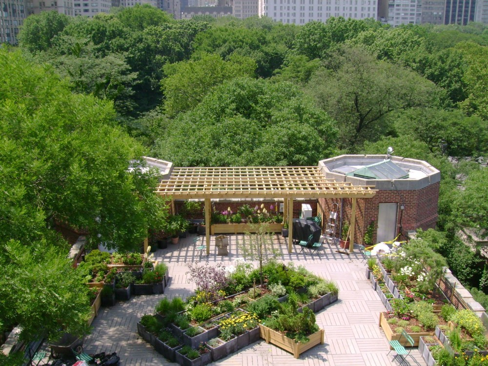 South roof from an upper tower.  The surrounding treetops of Central Park made a great backdrop for this roof garden.